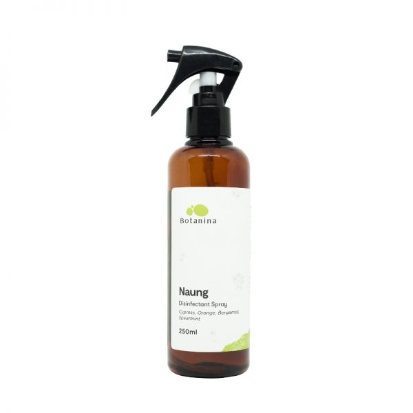 Naung Disinfectant Spray – Full size